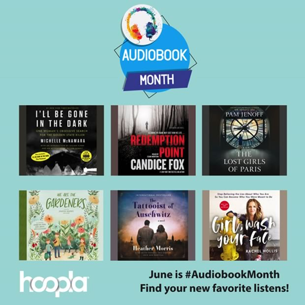 Image result for hoopla audiobook